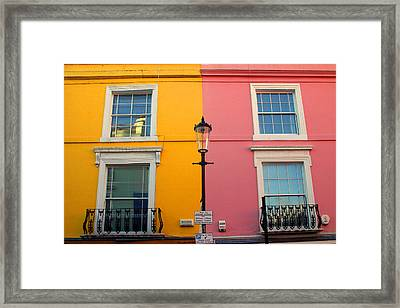 With Two Cats In The Yard Framed Print by Jez C Self