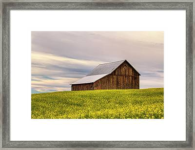 Withdrawn Framed Print by Mark Kiver