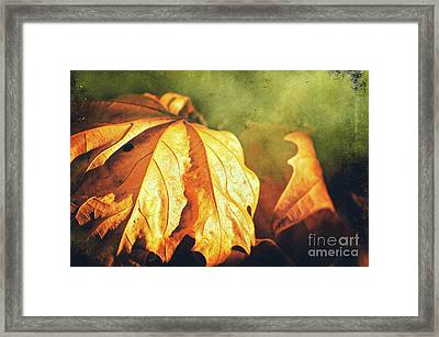 Framed Print featuring the photograph Withered Leaves by Silvia Ganora