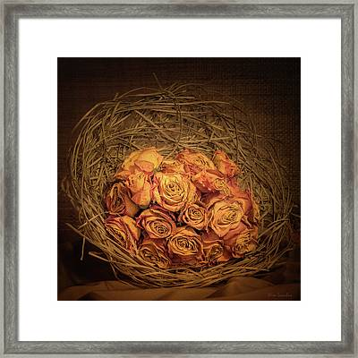 Withered Roses Framed Print by Wim Lanclus