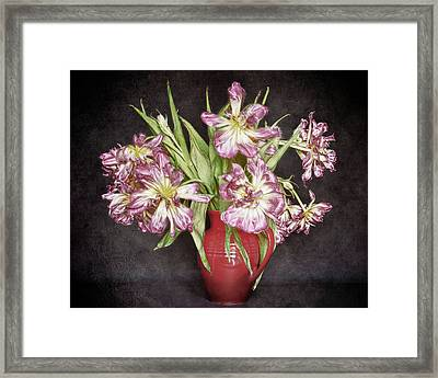 Withered Tulips Framed Print