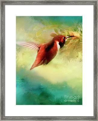 Within An Instant Framed Print by Janie Johnson