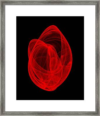Within Shell Vi Framed Print