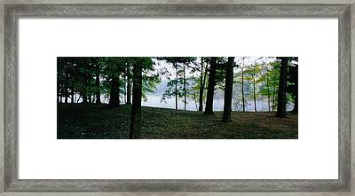 Within Sight Of A Lake Framed Print by Tom Hefko