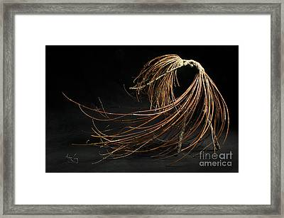 Withstand Framed Print