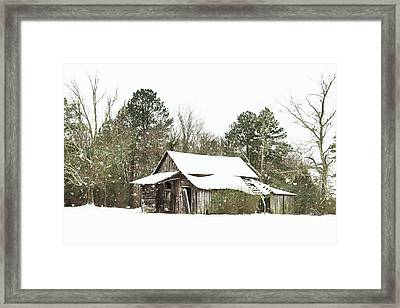 Withstood Many Winters Framed Print by Benanne Stiens