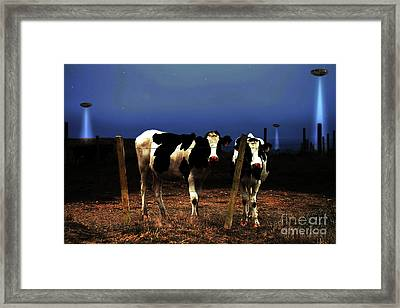 Witness . The Arrival Framed Print by Wingsdomain Art and Photography