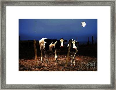Witness Framed Print by Wingsdomain Art and Photography