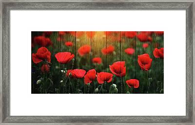 Wodd Poppies Framed Print