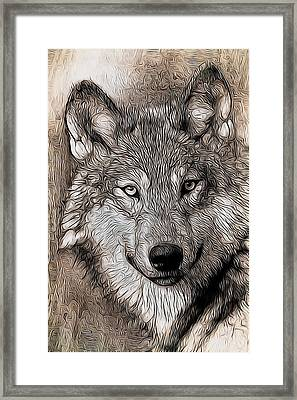 Aaron Berg Photography Framed Print featuring the digital art Wolf  by Aaron Berg