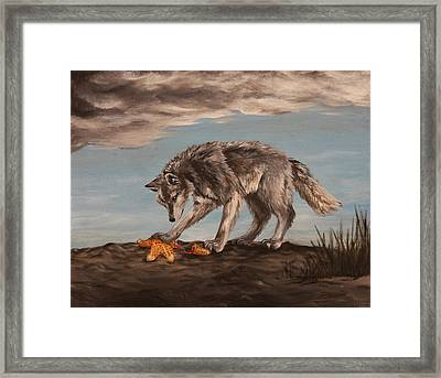 Wolf And Sea Star Framed Print