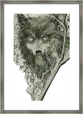 Wolf Bird 111 Framed Print by Charles Valentine