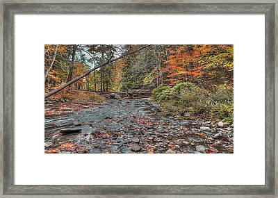Wolf Creek At Letchworth State Park, Ny Framed Print