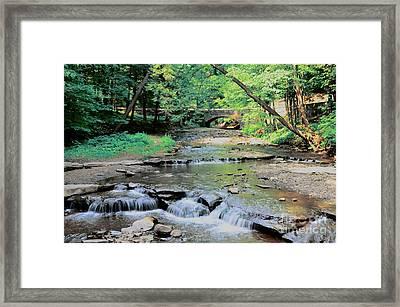 Wolf Creek Framed Print by Kathleen Struckle