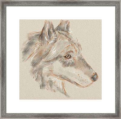 Wolf Framed Print by Crystal Hubbard