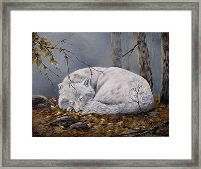 Framed Print featuring the painting Wolf Dreams by Mary McCullah