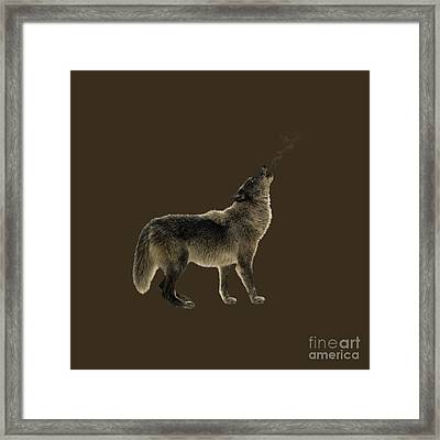 Wolf Howling Framed Print by Wildlife Fine Art