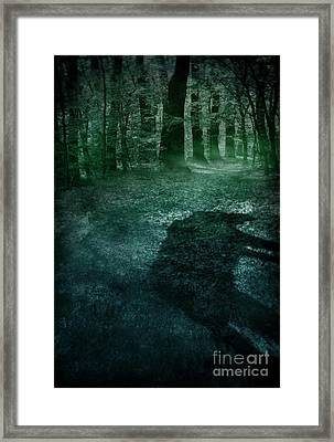 Wolf In The Woods Framed Print by Mythja Photography