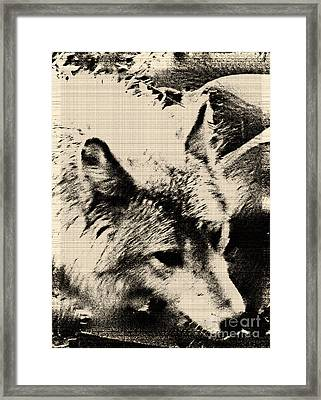 Framed Print featuring the digital art Wolf Lite by Debra     Vatalaro