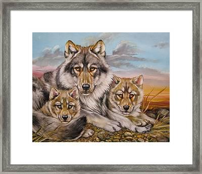 Wolf Nap Framed Print by Martin Katon