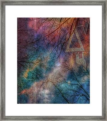 Wolf Night Framed Print