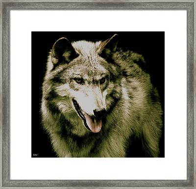 Framed Print featuring the mixed media Wolf Of The Night by Debra     Vatalaro