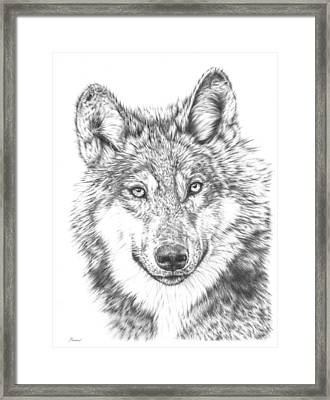 Wolf Framed Print by Remrov