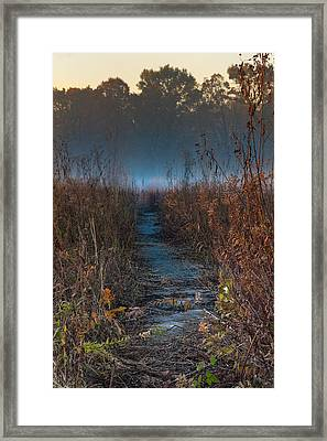Wolf Road Prairie Trail Framed Print by Steve Gadomski
