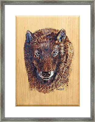 Wolf Framed Print by Ron Haist
