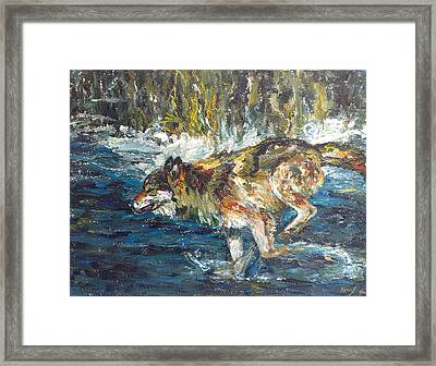 Framed Print featuring the painting Wolf Running by Koro Arandia