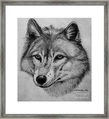 Wolf Sketch Framed Print