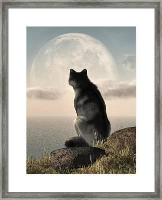 Wolf Watching The Moonrise Framed Print by Daniel Eskridge