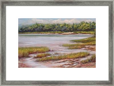 Wolfe's Neck State Park Framed Print