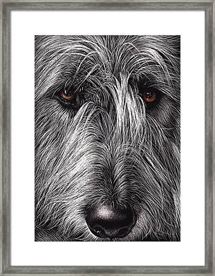Wolfhound Framed Print by Elena Kolotusha