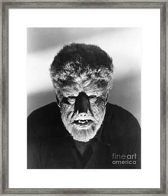 Wolfman, 1941 Framed Print by Granger
