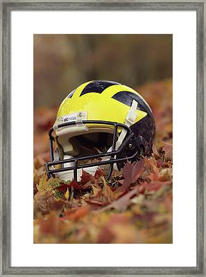 Wolverine Helmet In October Leaves Framed Print