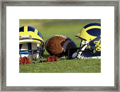 Wolverine Helmets And Roses Framed Print