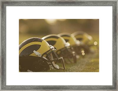 Wolverine Helmets Sparkling In Dawn Sunlight Framed Print