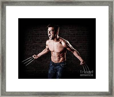 Wolverine Framed Print by Jt PhotoDesign