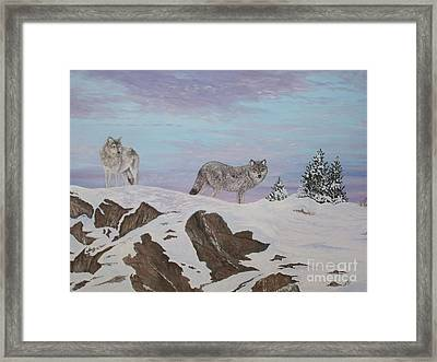 Wolves At Twilight Framed Print