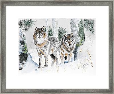 Wolves In The Birch Trees  Framed Print