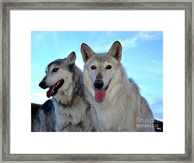 wolves IV Framed Print