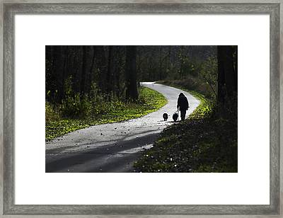 Woman And Border Collies Framed Print