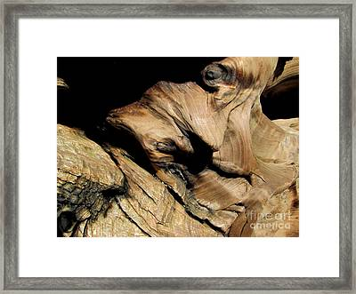 Old Woman Of The Woods Framed Print