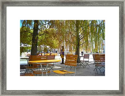 Woman Sketching Tree Framed Print by Lawrence Lanoff