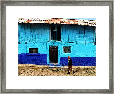 Woman Walking By The Blue House Framed Print