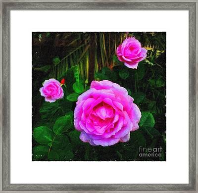 Wonder Of Nature Framed Print by Blair Stuart