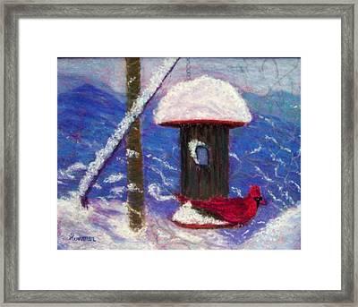 Wonder Of Winter Framed Print by Sandy Hemmer