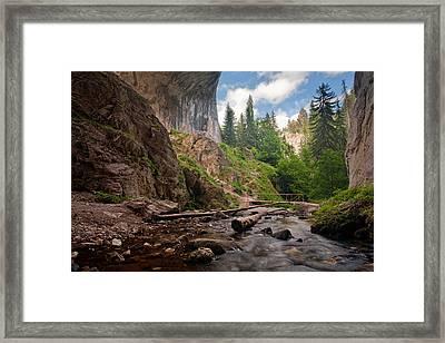 Wonderful Bridges Framed Print by Evgeni Dinev