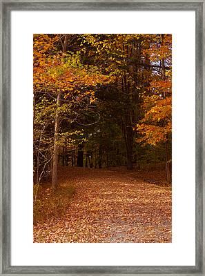 Wonderful Fall Colors Framed Print by Robert  Torkomian